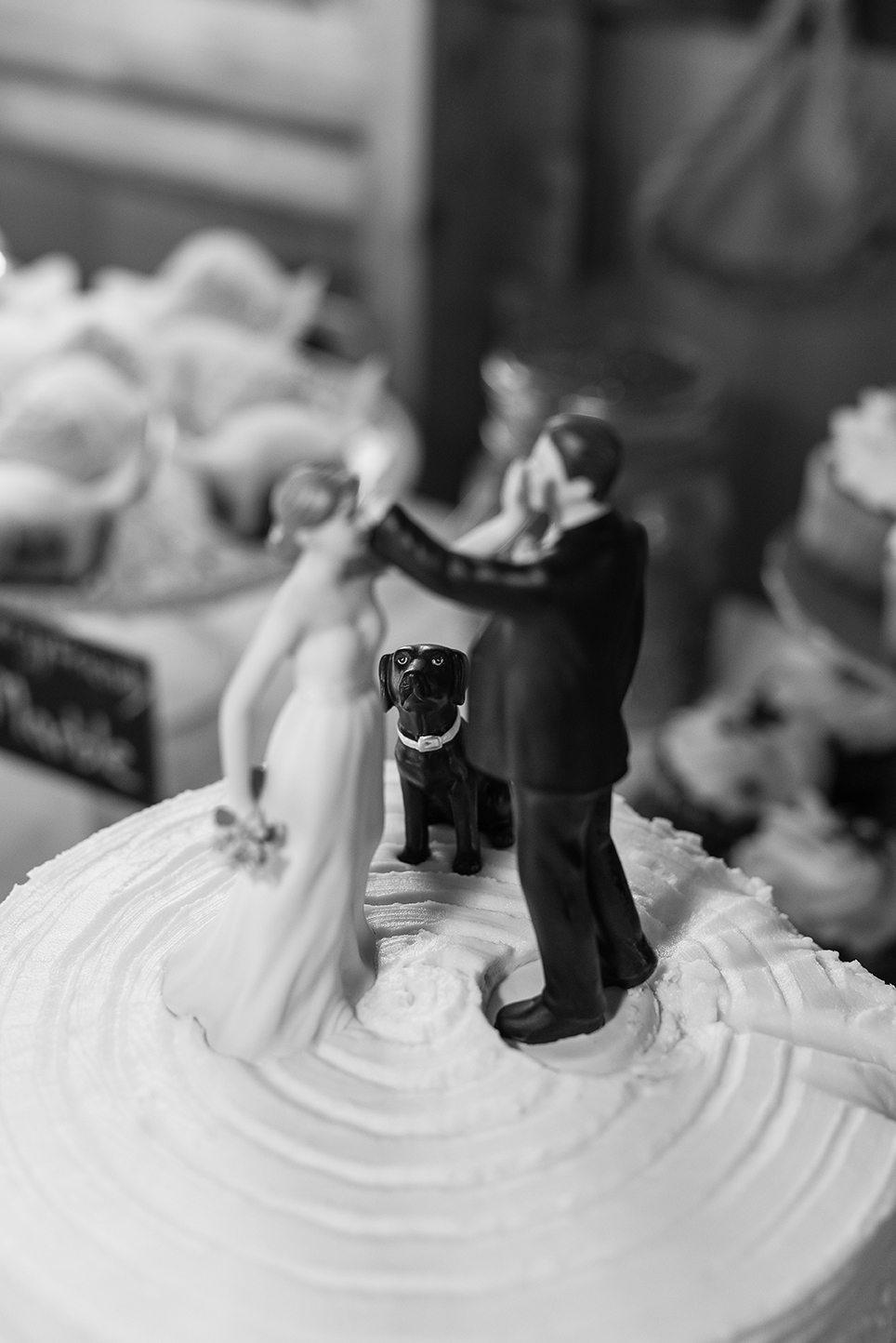 Whimsical Cake Topper with Dog at Peacock Ridge in North Lawrence, Ohio